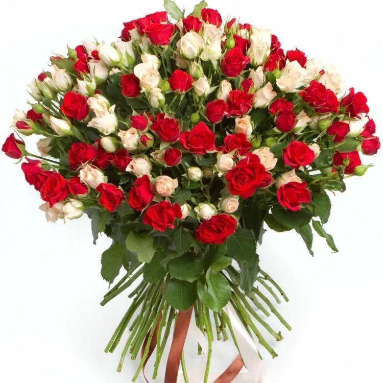 Свадебный букет из красных роз фото