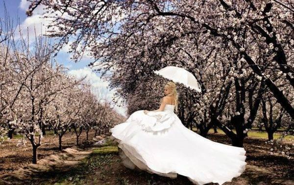 Май свадьба